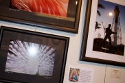 art_gallery_fort_lauderdale_20