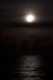 tokyo_blue_moonlight