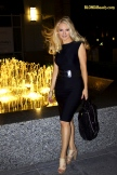 Body_slimmer_dress_C__logo