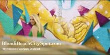 Wynwood Miami fashion District City Spot