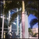 Kravis_center_palm_beach_2