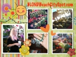 Blondi Beach City Spot Florida Farmers Market