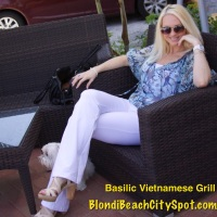 {BLONDi Beach City Spot} Lunch at Basilic Vietnamese Grill Fort Lauderdale Florida