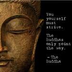 buddha_life_inspiration
