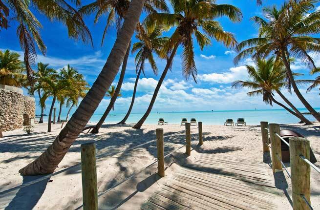 the best beaches to visit in december blondi beach