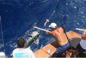 Fishing charters Fort Lauderdale Florida